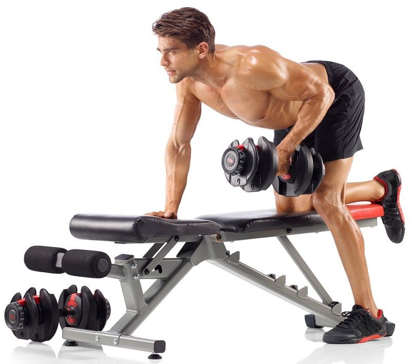Bowflex 552 dumbbells bench workout